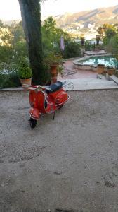 Vespa rouge 1